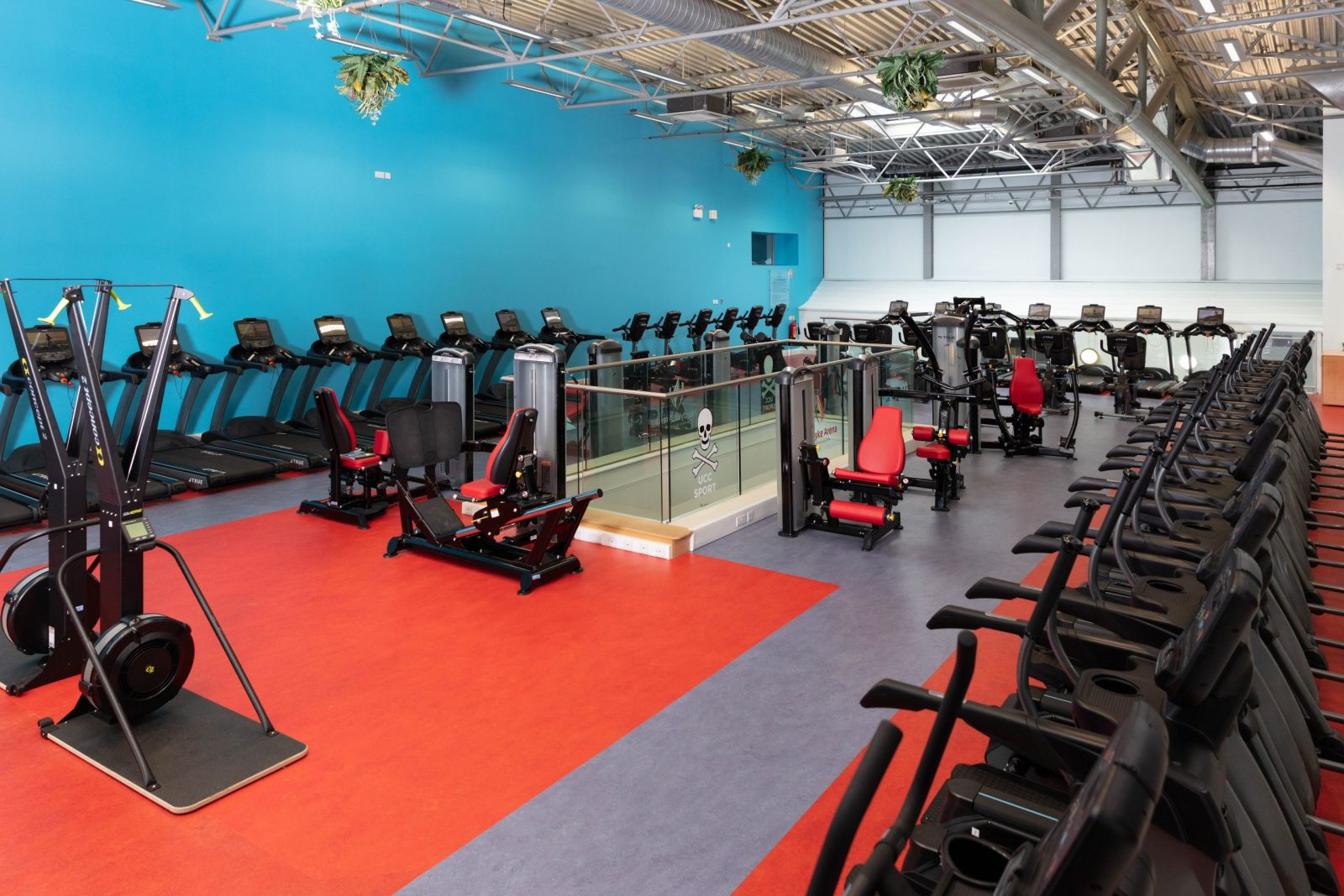 an exercise room with cardio machines