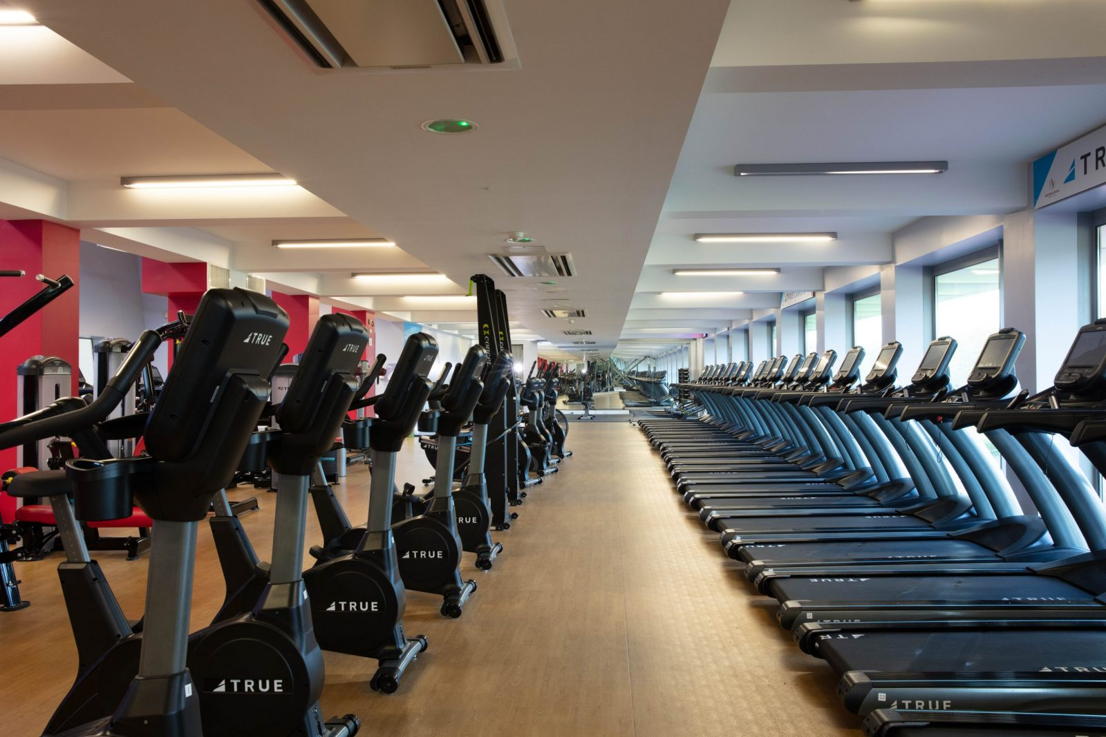 treadmills and bike exercising machines
