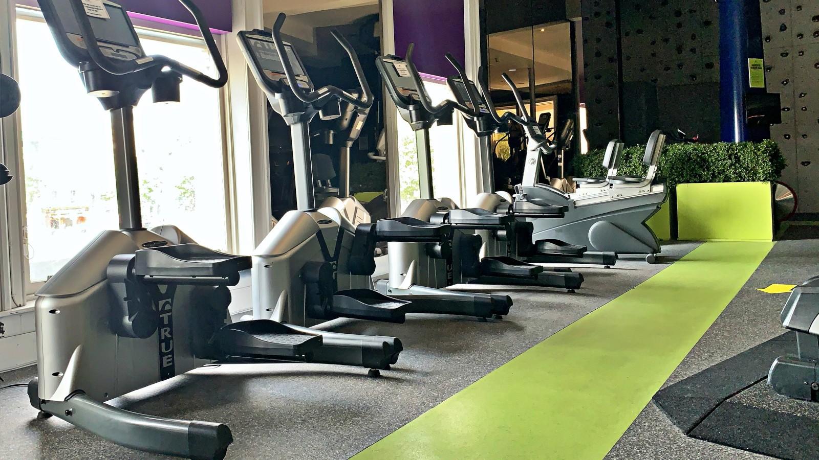 true fitness stepper machines