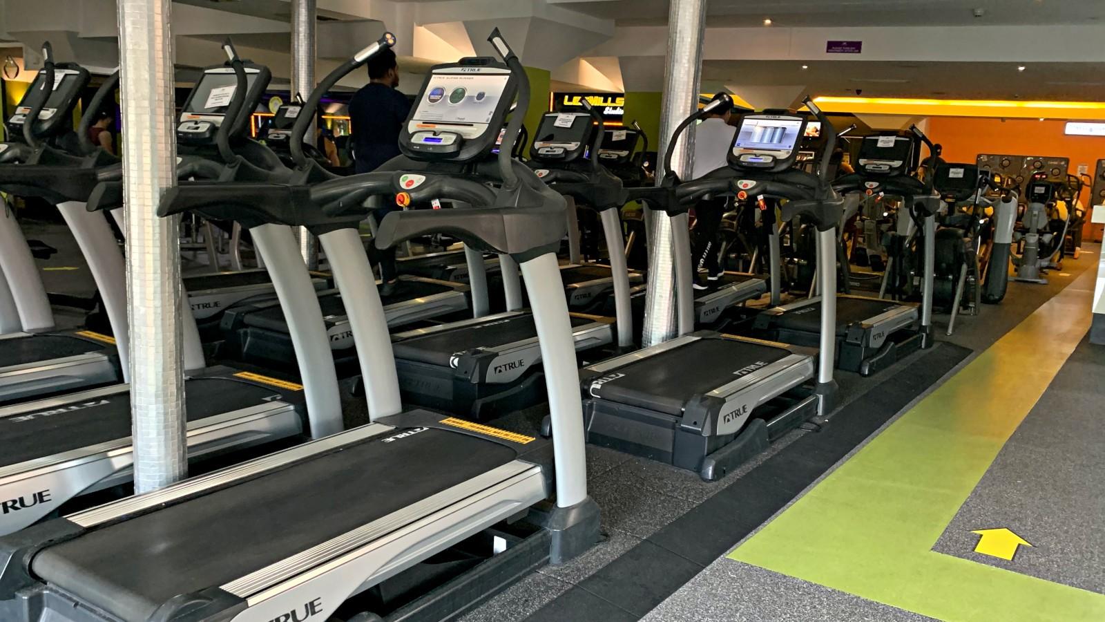a row of true fitness treadmil machines