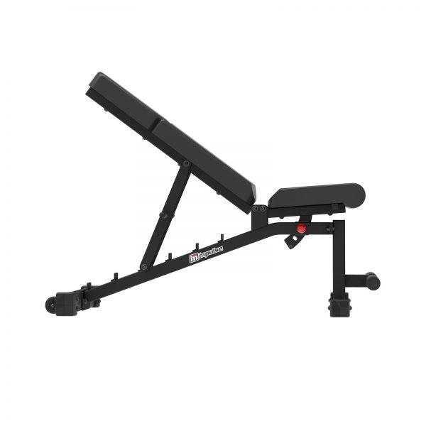 if2011 wx 20 .1387 - Impulse IF2011 Adjustable Weight Bench