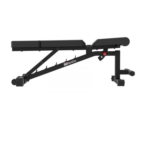 if2011 wx 20 .1392 - Impulse IF2011 Adjustable Weight Bench